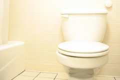 toilet repair Tamworth